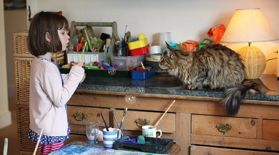 Autism, Thula the cat, and why Kids Must Move
